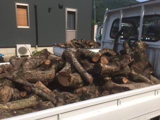 薪の回収 ワンダーデバイス