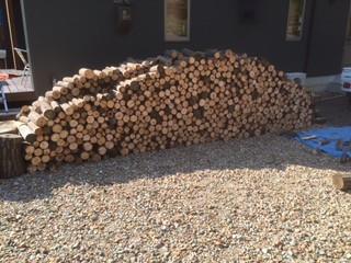 ワンデバ友の熊キノコ家で木を切る