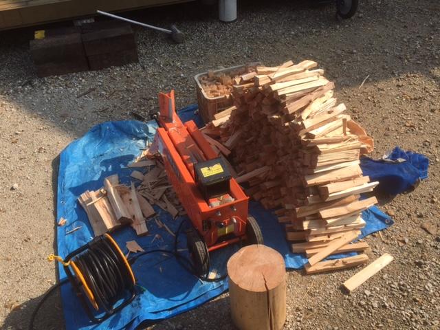 針葉樹の玉を割る