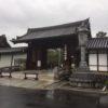 【天井に龍】妙心寺へ行ってきました。