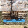 薪ストーブの薪棚の増築について