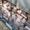 薪棚の南側と北側の大きな違い(生えてくる硬質なきのこの話)