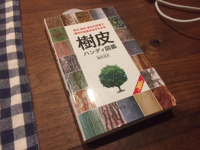 薪狩りに最適!オススメの本「樹皮ハンディ図鑑」