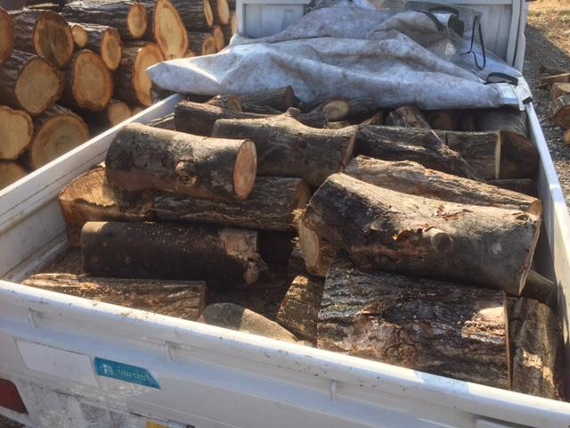 随分休止していた、山師から買った原木を土場から回収してきました。
