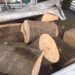 【薪回収】以前お願いした取引先からの原木のお話が来ました。