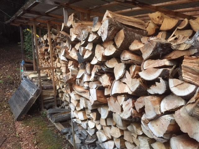 山土場の薪