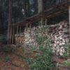 スゴイ寒波が訪れる前に、自宅用の乾燥薪を山から持ってきた。