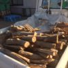 【自宅用薪】朝から自宅用の乾燥薪を回収してきました。