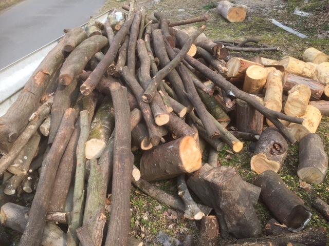 【枝薪づくり】枝薪づくりはやたら手間がかかるし、枝が回転してちょっと危ない