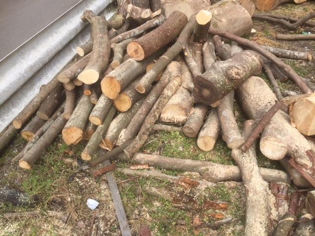 【枝薪切り続けて】枝薪をひたすら作る俺