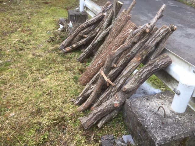 【原木仕入れ】山師から原木を購入しました