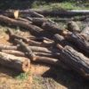 【原木】土場の原木がだいぶ片付く