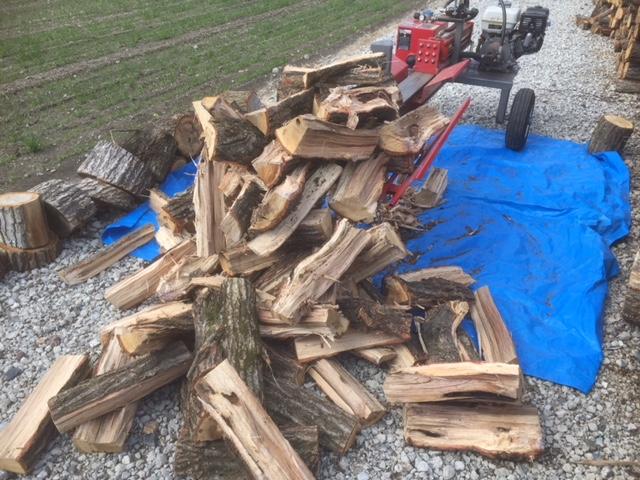 【20トン薪割り機】ティンバーウルフ(TW-2)を出して、溜まった玉を割ってやりました。