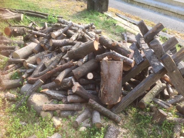【薪制作】ようやくラストスパート?山土場の枝を全部切る!