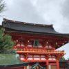 【京都観光2】薪にできる玉切りした原木を伏見稲荷で見つける。(めざとい)