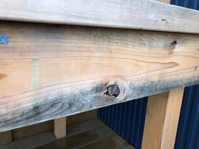 【連日の雨で】一気に木材がカビた件