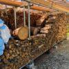 【薪棚の整理】割った薪を積む為に、さらに薪棚を整理する