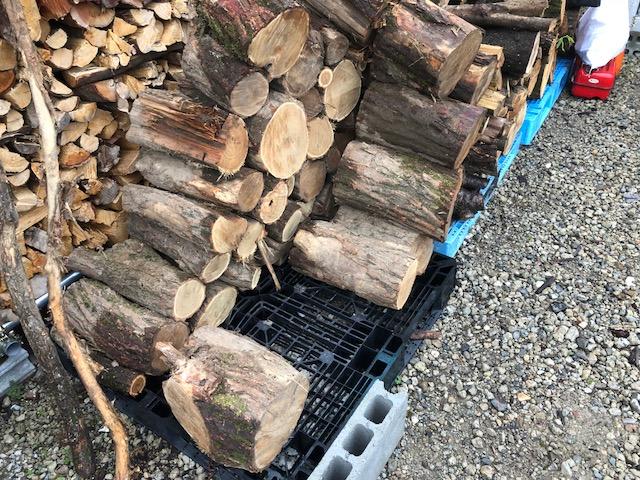 朝はちょっと天気が悪かったんですが、朝から薪割りです。 アカシアの玉を片付けます。