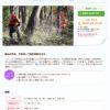 森作りワークショップ伐採 1日目