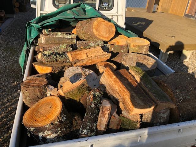 夜明けを見ながら原木回収