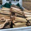 山土場に薪を移動。明日からの玉切りのため、チェーンソーの目立てもするぜ。