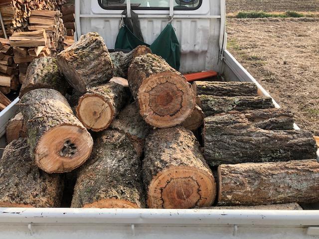 土場の残りの太い原木を切る
