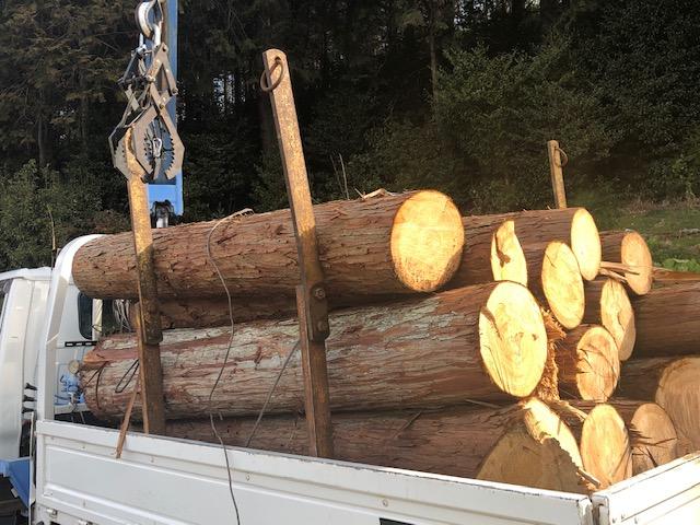 いつもは山師の土場までいって原木を切って買ってますが、2トン買う事にしました。だいたい軽トラで5杯くらいになるので、送料を払って、うちの山土場までもってきていただいたわけです。
