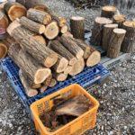 40cmの原木は分ける
