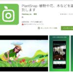 植物や花、木などを識別するアプリ「PlantSnap」
