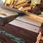 針葉樹の皮がキレイにめくれないときは