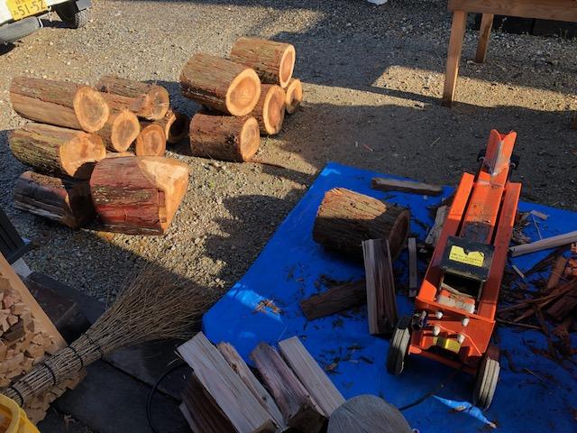 自宅用の針葉樹を割る