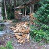 パレット棚は本当は今回作るつもりはなかったんですが、大量に入荷される原木のおかげで2つばかり作ることになりました。  あと原因のひとつに、山にある薪棚の下にシロアリが来ている節があり、実際のところ薪が積まれるところまでは乾燥していて来ていないのですが、それ以外の少し離れた水がつくところの角材がやられていたので、これから2年後にどうなるかわからないので薪を撤収しました。  おかげで積み作業が2度手間になりました。