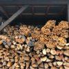 キャンプ・焚火用の薪の在庫について