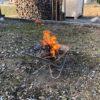 庭と薪棚付近の木クズを集めて焚火