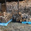 【お買い得】選木アウトレット玉販売のお知らせ